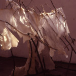 image of white transparent wax sculpture shelter