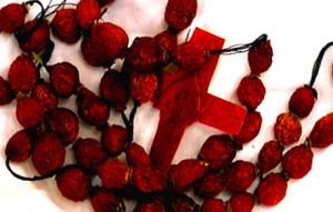 rosehip rosary